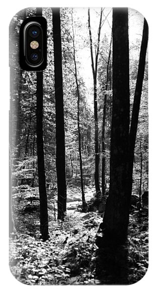 Forest Black And White 13 Phone Case by Falko Follert