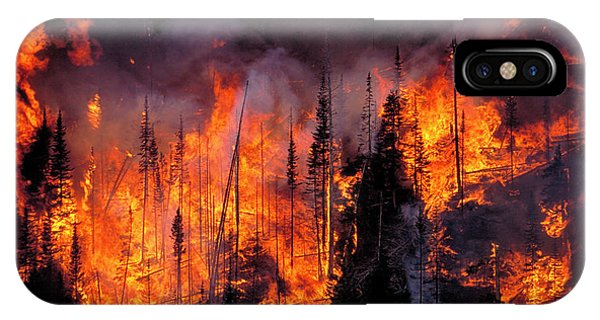 Forest Fire Phone Case by Kari Greer/science Photo Library