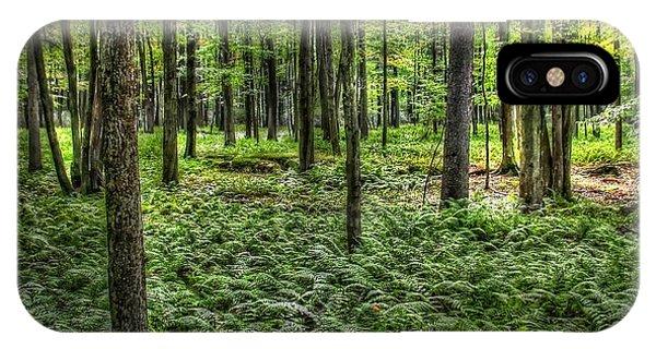 Forest Floor IPhone Case