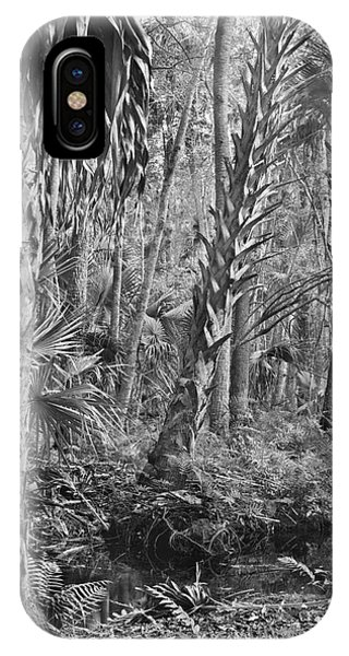 Forest Floor. Little Big Econ State Forest Seminole County.  IPhone Case