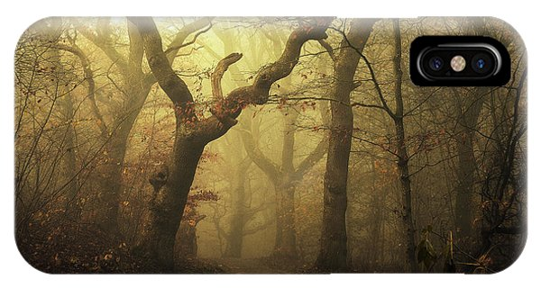 Fog Mist iPhone Case - Forest by Leif L?ndal