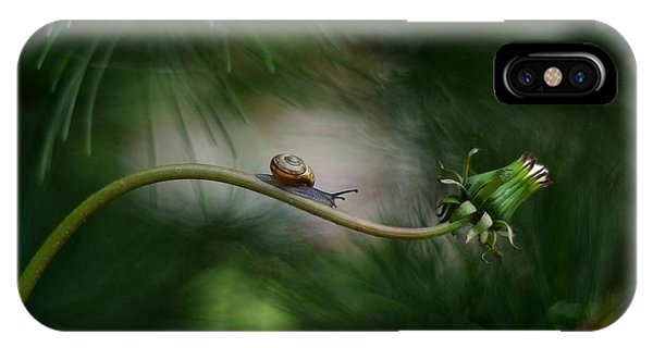 Macro iPhone Case - Forest Nook by Izis