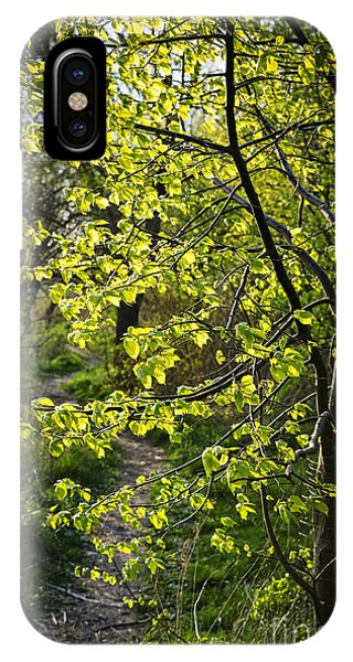 Hiking Path iPhone Case - Forest Path by Elena Elisseeva