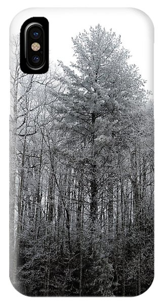 Forest With Freezing Fog IPhone Case