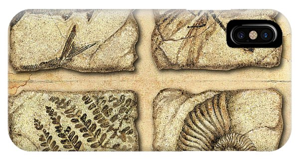 Dinosaur iPhone Case - Fossils by JQ Licensing
