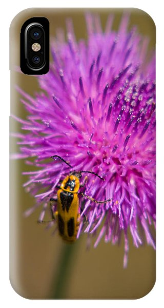 1431 iPhone Case - Turkey Bend Park Texas Found On Purple by JG Thompson