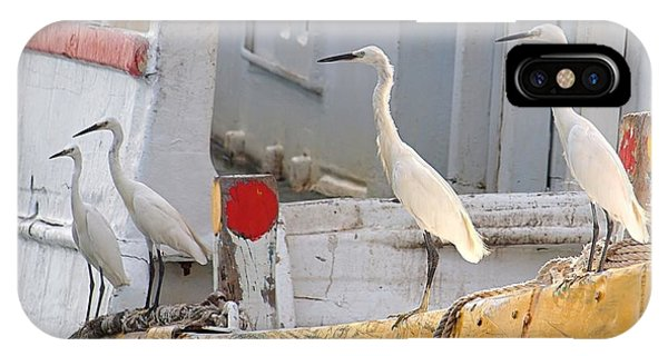 Four Egrets Watch For Fish IPhone Case