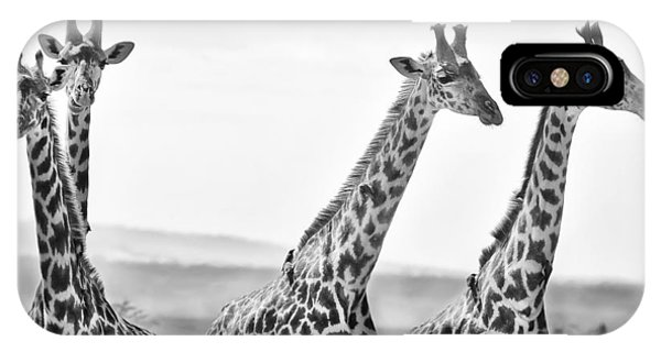 Giraffe iPhone Case - Four Giraffes by Adam Romanowicz