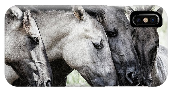 Tender iPhone Case - Four Konik Horses by Jaap Van Den