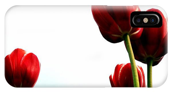 Four Red Tulips IPhone Case
