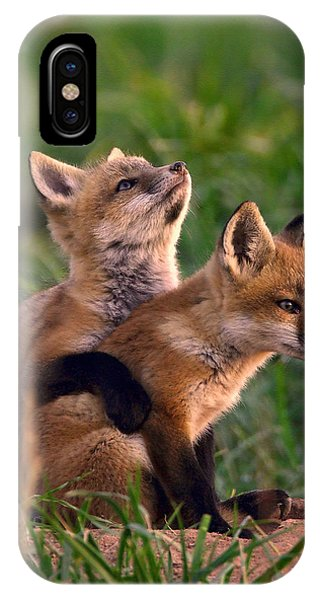 Fox Cub Buddies IPhone Case