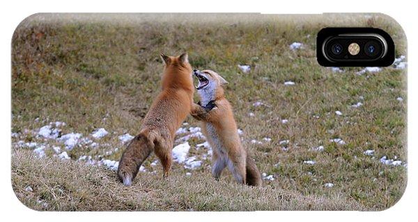 Fox Dance IPhone Case
