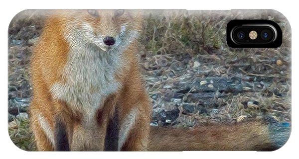 Fox In Oil IPhone Case