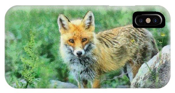 Fox In The Rocks Phone Case by Czesznak Zsolt