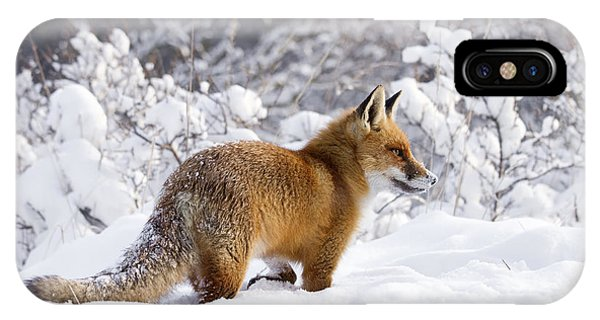 Winter iPhone Case - Fox In The Snow by Roeselien Raimond