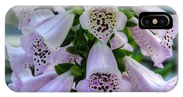 Foxglove At Waters Edge IPhone Case