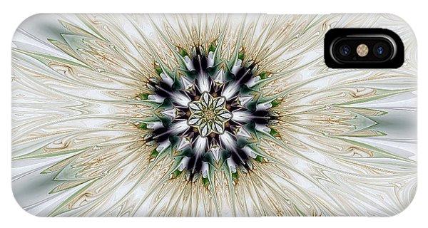 Fractal Desires Kaleidoscope IPhone Case