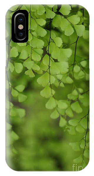 IPhone Case featuring the photograph Fragile by Linda Shafer