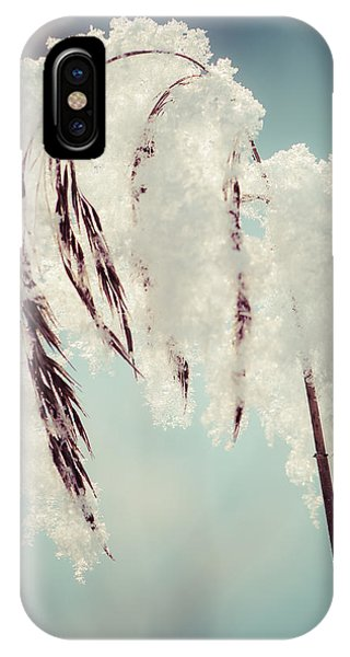 Fragile Winter Day IPhone Case