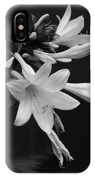 Fragrant Plantain Lily IPhone Case