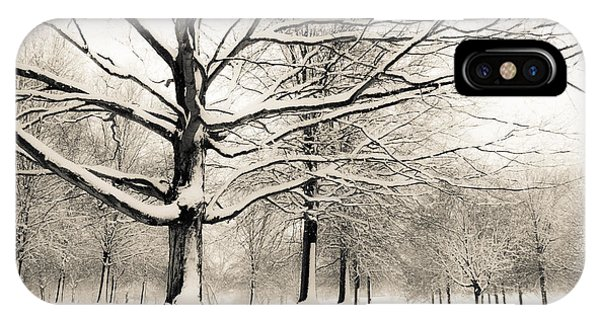 Francis Park In Snow IPhone Case