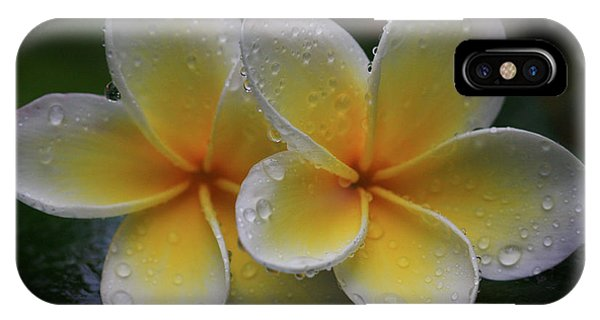 Frangipani Pair IPhone Case