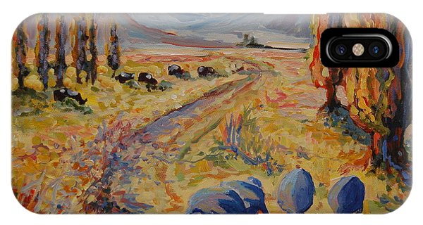 Free State Landscape With Guinea Fowl IPhone Case