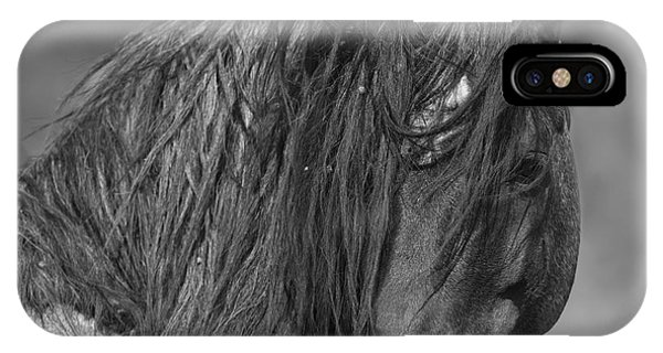 Wild Horses iPhone Case - Freedom Close Up by Carol Walker
