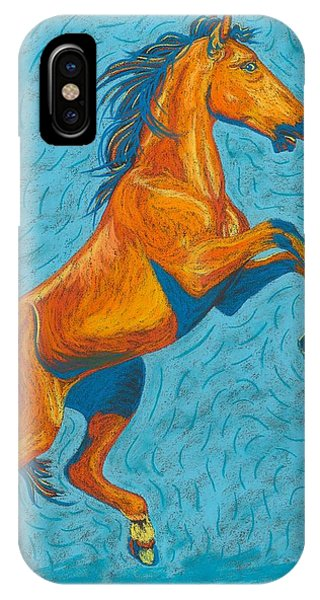 iPhone Case - Freedom Fighter by Cynthia Sampson