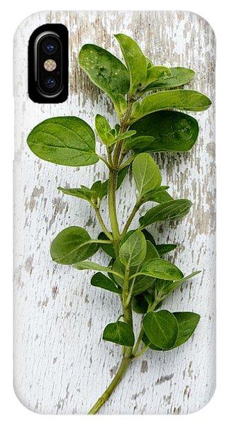 Twig iPhone Case - Fresh Oregano by Nailia Schwarz