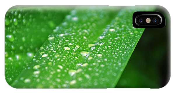Fresh Rain Drops IPhone Case