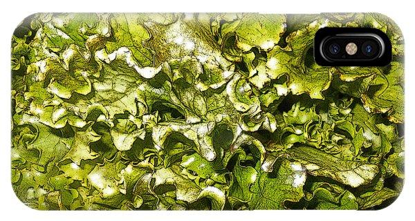 Fresh Romaine Phone Case by Sherry Dooley