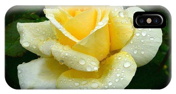 Fresh Sunshine Daydream Rose IPhone Case