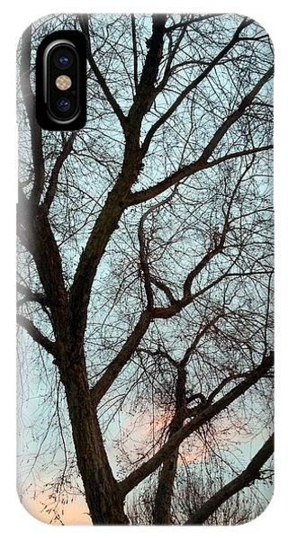 Fresno Winter Sunset IPhone Case