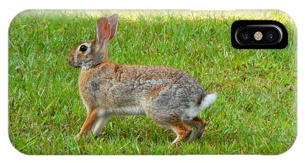 Friendly Rabbit I Phone Case by Lynn Griffin
