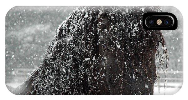 Horse iPhone Case - Friesian Snow by Fran J Scott