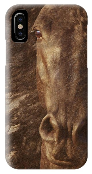 Friesian Spirit IPhone Case