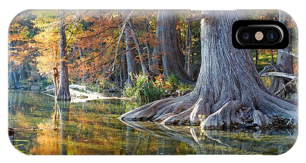 Bald Cypress iPhone Case - Frio River Morning by Silvio Ligutti