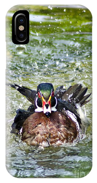 Frisky - Wood Duck IPhone Case