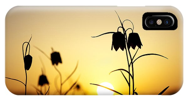 Fritillary Flower Sunset Phone Case by Tim Gainey