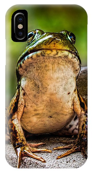 IPhone Case featuring the photograph Frog Prince Or So He Thinks by Bob Orsillo