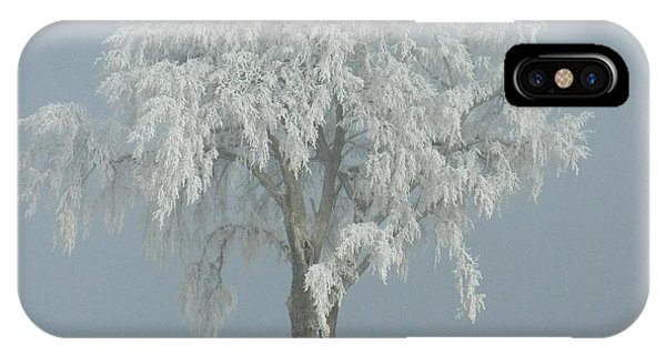 Frost Covered Lone Tree IPhone Case