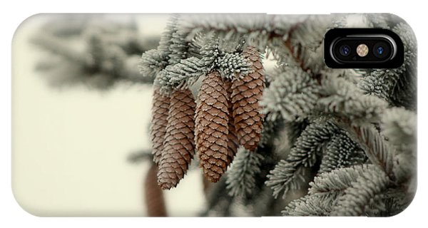 Frosted Evergreen IPhone Case