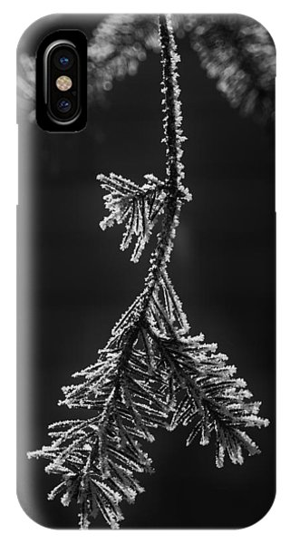 Frosted Pine Branch IPhone Case