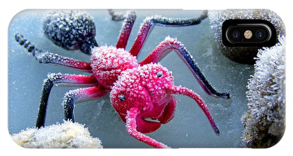 Frosty Ant In Winter IPhone Case