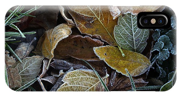 Frosty Autumn Leaves IPhone Case