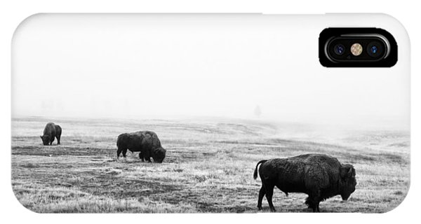 Yellowstone National Park iPhone Case - Frosty Bison by Mark Kiver