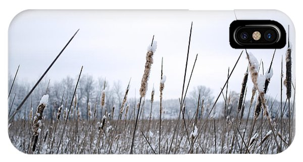 Frosty Cattails IPhone Case