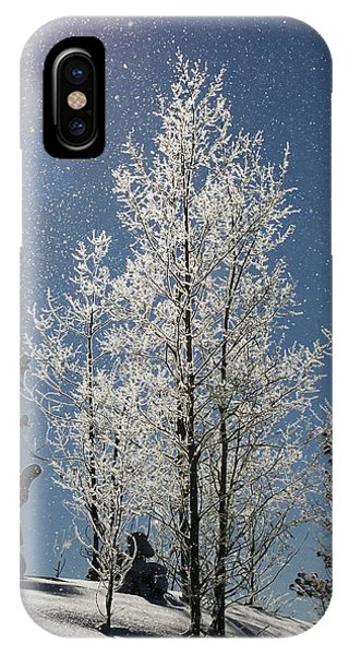 Frosty Colorado Aspen IPhone Case