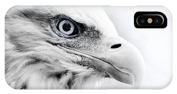 Frosty Eagle IPhone Case
